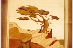 marquetry pictures 015